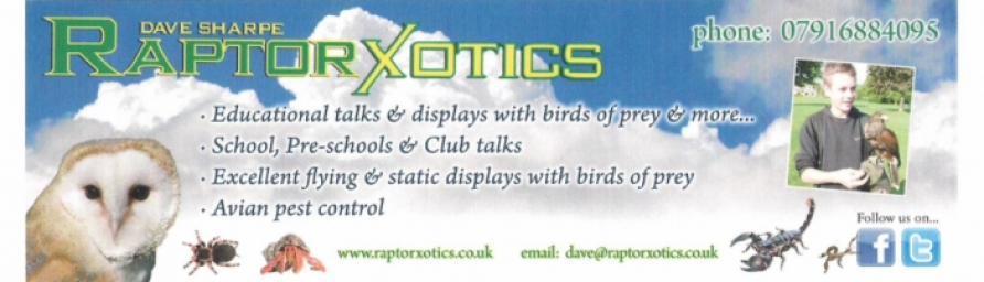 www.raptorxotics.co.uk Logo